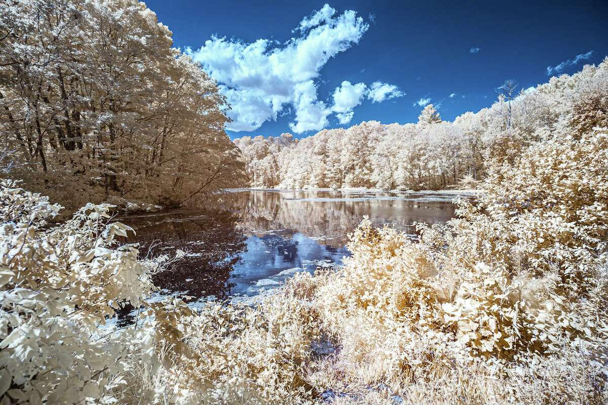 The Arts Center Killingworth returns to the Madison Connecticut Town Green to present its annual Autumn Outdoor Arts Festival, Oct. 10-11, rain date Oct. 12. Above, Supply Pond, Infrared-Photography, Robert Thomas.
