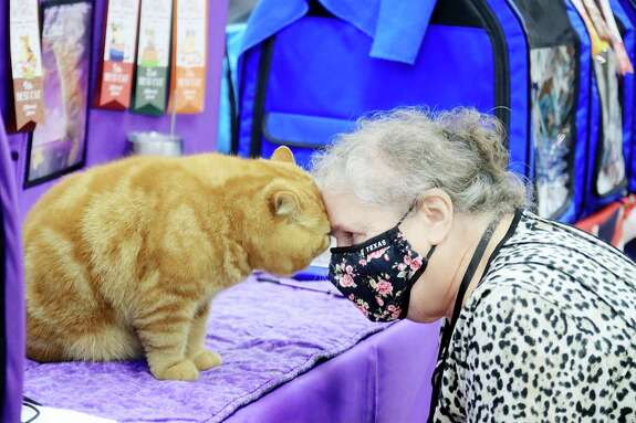Jan Chambers shares a moment with Diablo at the the Fall, Felines and Fun cat show Sept. 26-27 at the Jimmy Burke Activity Center in Deer Park.