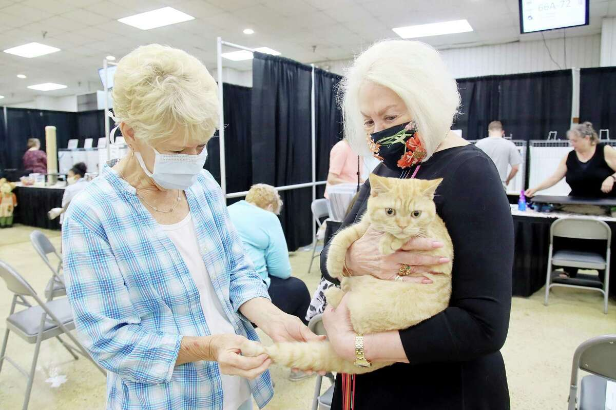 Barbara Lindsey and Priscilla Kahutek hangs out with Dexter.