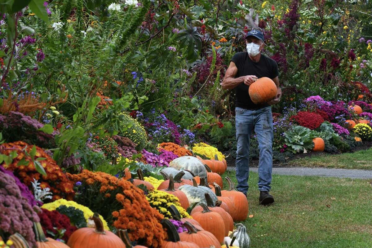 Saratoga Spa State Park gardener Dan Urkevich rearranges the colorful fall display at the park's entry on South Broadway at Avenue of the Pines on Tuesday, Sept. 29, 2020, in Saratoga Springs, N.Y. (Will Waldron/Times Union)