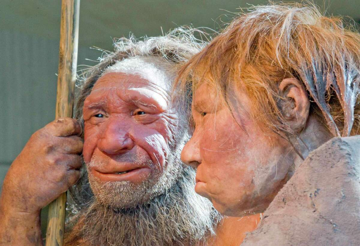 This Friday, March 20, 2009 file photo shows reconstructions of a Neanderthal man named