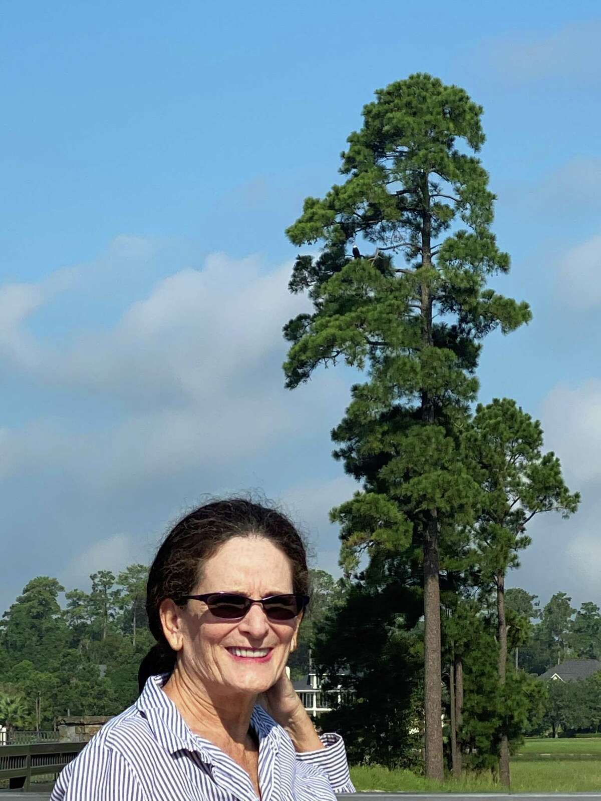 Tami Houston of East Shore, stand in the forefront of a tree on Mitchell Island where one of the bald eagles can be seen in this photograph from the weekend. Houston said the newly formed group of locals dedicated to saving the island habitat for the eagles is an off-shoot of a larger, 800 to 1,000-strong assemblage of area residents who object to the plans to change the layout of the island - currently set at 19 large mansions - to 58 closely-spaced homes. While the eagles are an important aspect of objections, she said that many issues have been raised with the development plants by Howard Hughes, from traffic congestion, noise, possibly 18 months of intensitve contruction and taking down of more trees in the area..