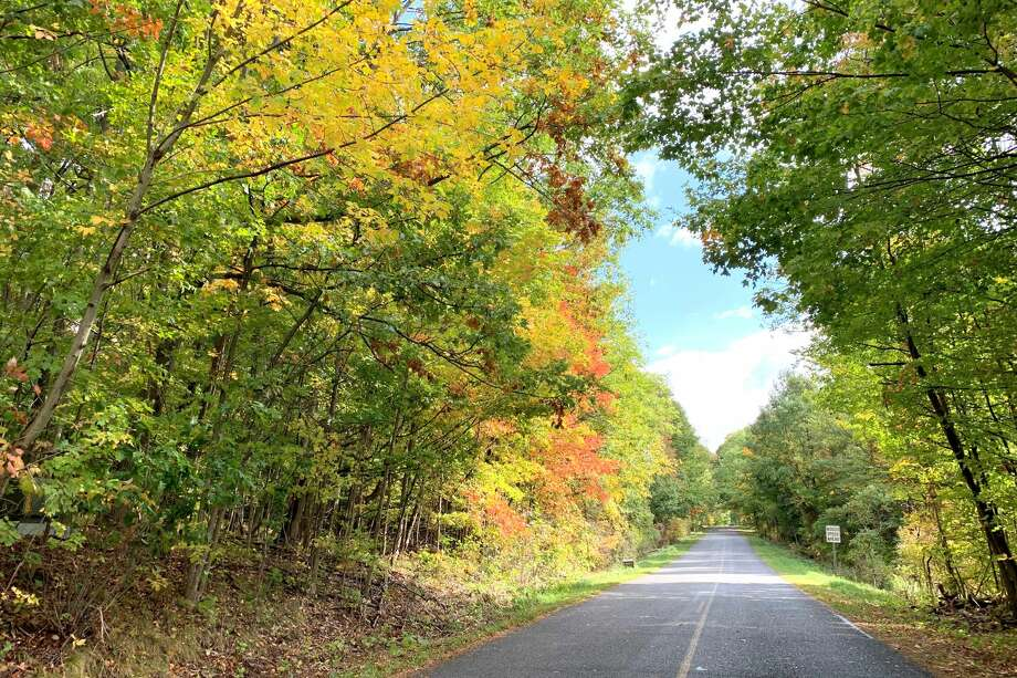 Bright oranges, reds and yellows are starting to fill out the trees in Big Rapids and across Mecosta County. Pioneer photographer Cathie Crew was out and about Wednesday and captured this scene in the area. Photo: Pioneer Photo/Cathie Crew