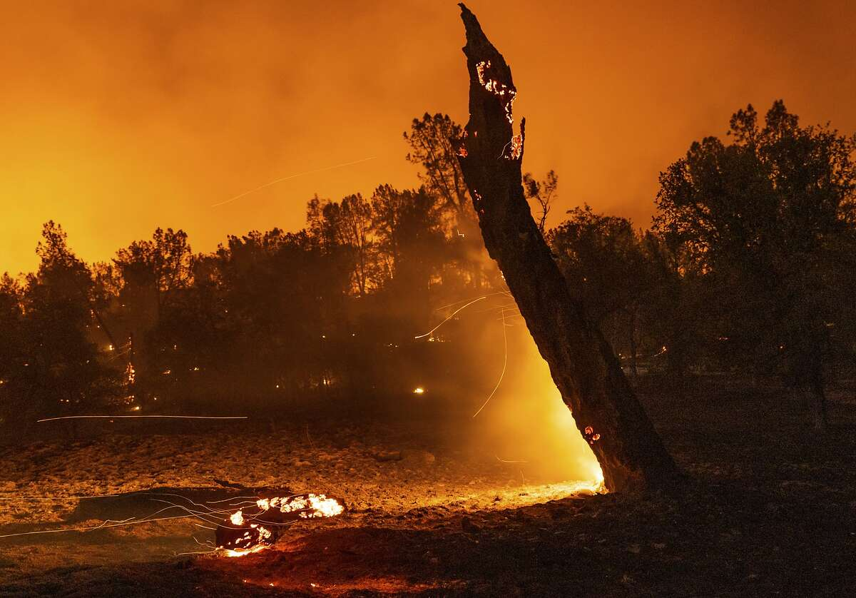 A tree smolders next to Platina Road at the Zogg Fire near Ono, Calif., on Sunday, Sep. 27, 2020. (AP Photo/Ethan Swope)