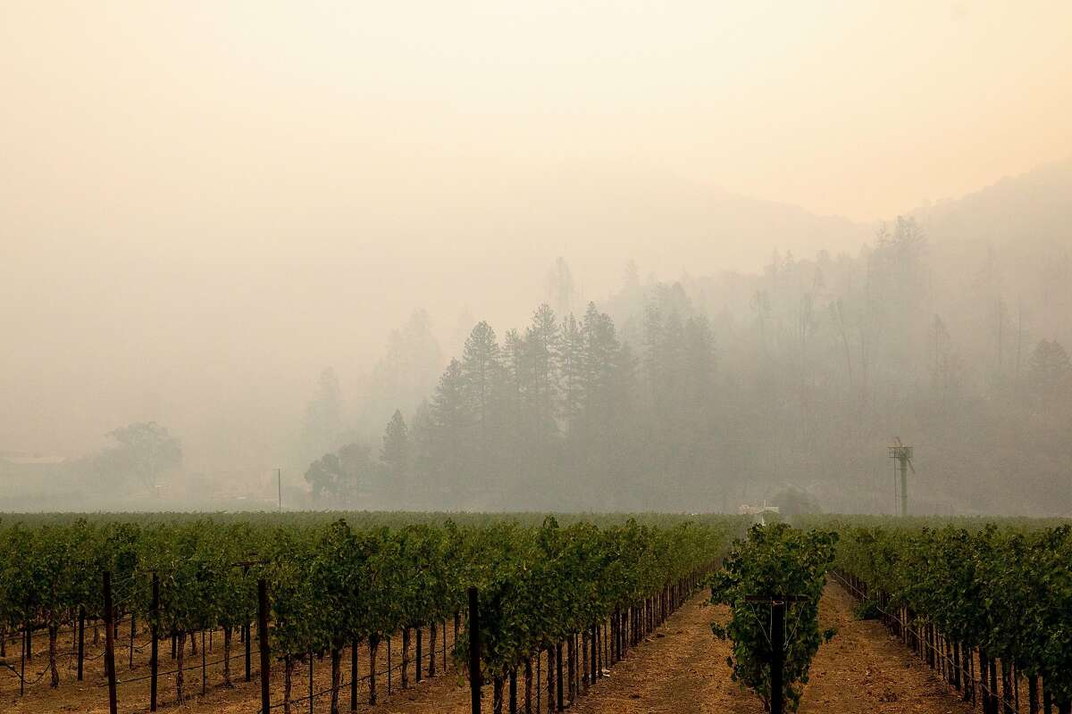 Smoke rises over grapevines as the Glass Fire burns in the mountains east of Silverado Trail in Calistoga. Fires and smoke are contributing to the strain on the power grid.