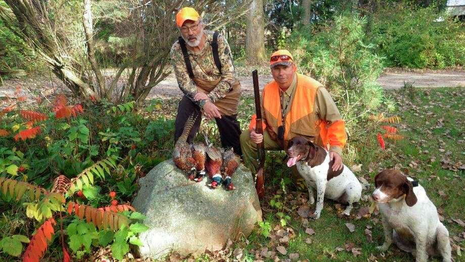 Bob Walker (left) and Rick Boylan (right), both of Kingston, are shown with theiropening morning limit of wild Thumb roosters. Today's highly evasive wildpheasants require good bird dogs to put them to flight. (Tom Lounsbury/Hearst Michigan)