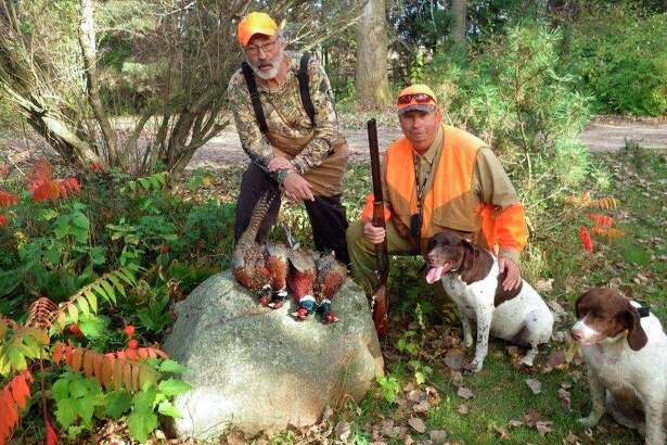 Bob Walker (left) and Rick Boylan (right), both of Kingston, are shown with their opening morning limit of wild Thumb roosters. Today's highly evasive wild pheasants require good bird dogs to put them to flight. (Tom Lounsbury/Hearst Michigan)