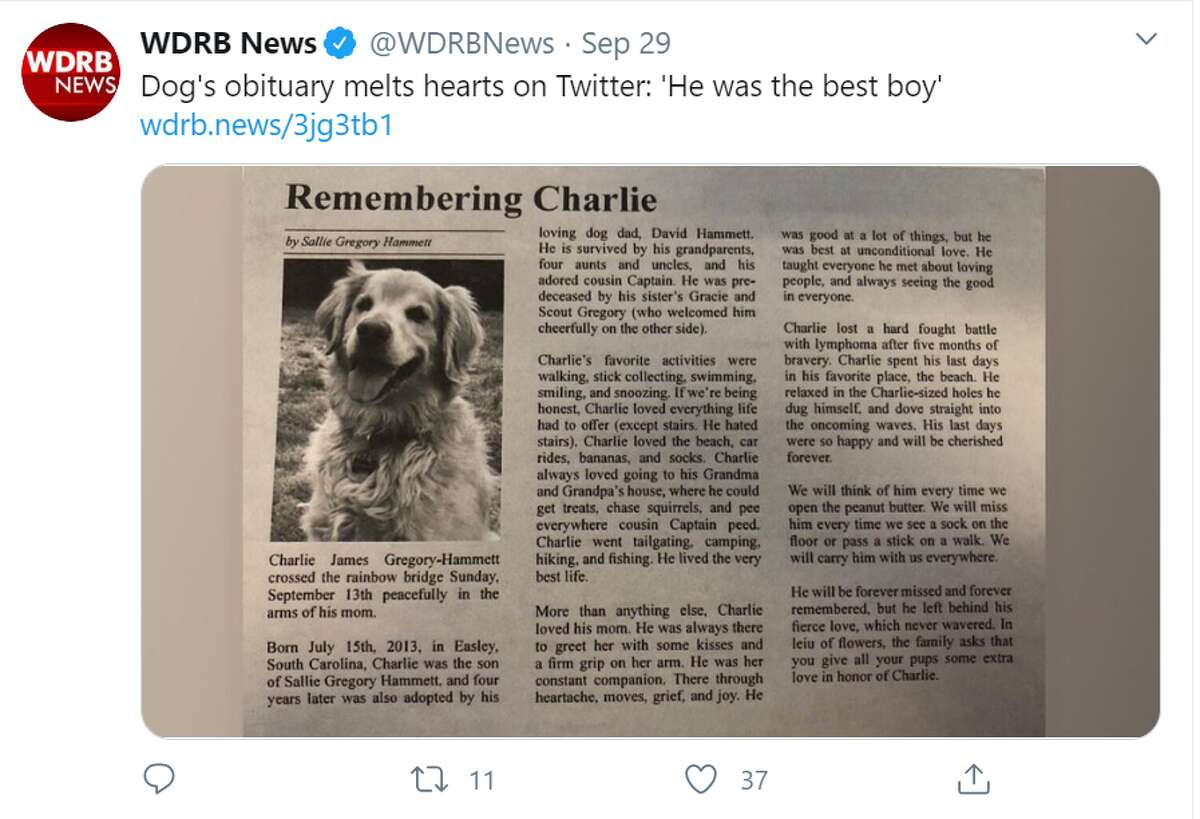 A South Carolina woman's touching obituary to her dog Charlie went viral on Twitter inspiring thousands to share their pet stories.