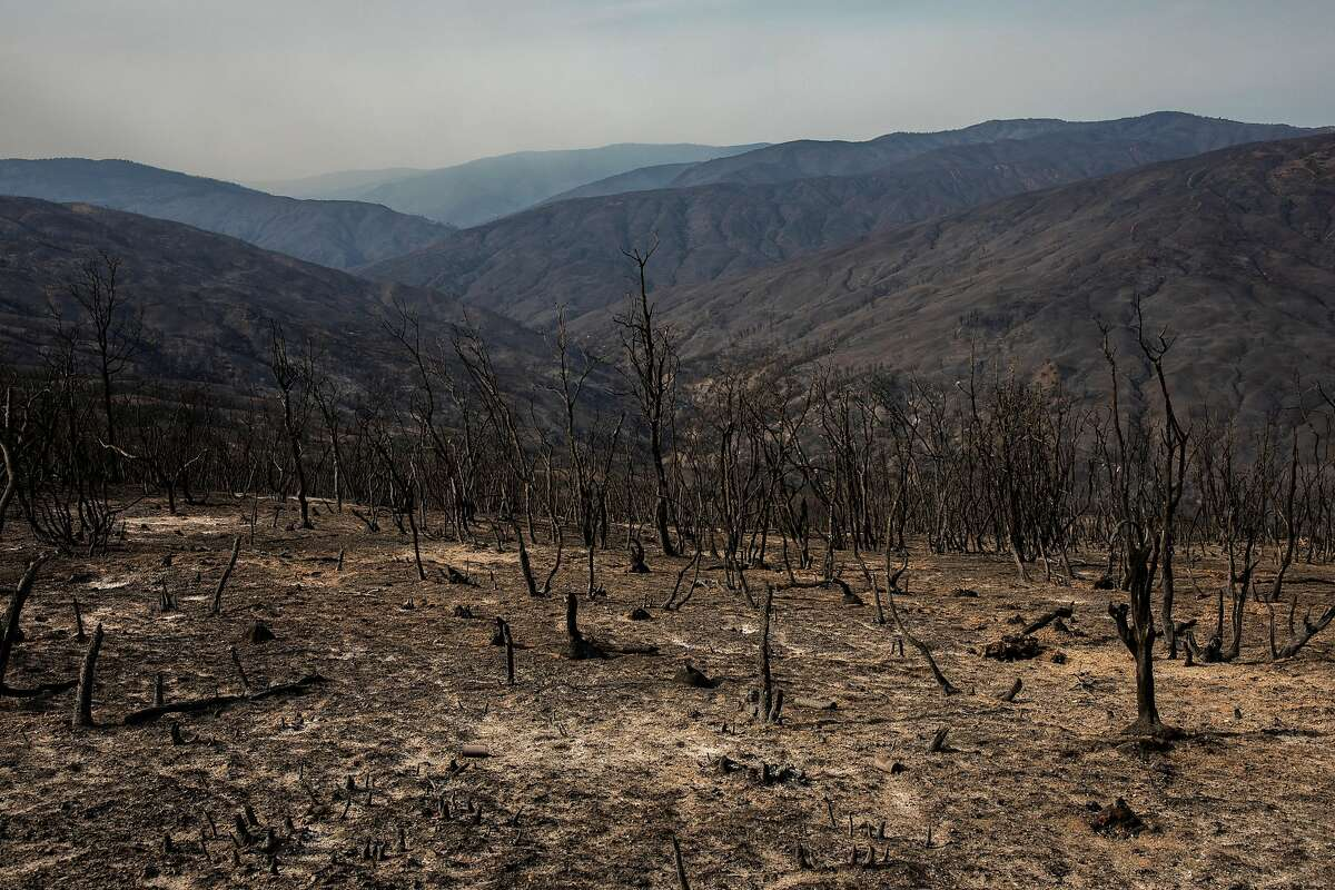Part of the Mendocino National Forest, seen Sept. 26 from the Rattlesnake Firefighter Trailhead in Elk Creek (Glenn County), was destroyed in the August Complex fire.