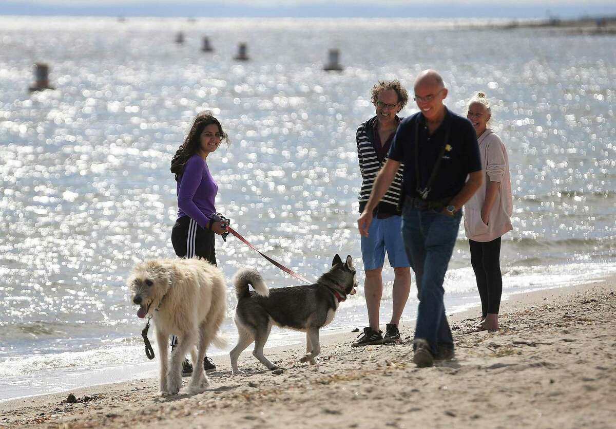 Dog owners including Mike O'Neill and his Irish Wolfhound Murphy enjoy the opening of beach season for dogs and other animals at Jennings Beach in Fairfield, Conn. on Thursday, October 1, 2020. Animals are allowed on Fairfield beaches each year beginning October 1st.
