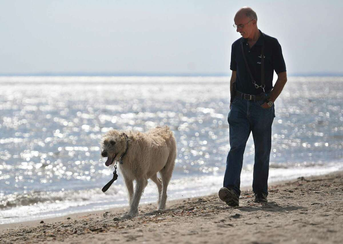 A man and his Irish Wolfhound Murphy enjoy the opening of beach season for dogs and other animals at Jennings Beach in Fairfield, Conn. on Thursday, October 1, 2020.