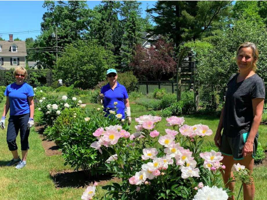 Ridgefield Garden Club members Lori Richiger, Eileen McIntyre, and Lisa Chuma tend to the newly renovated Ballard Garden. Photo: The Ridgefield Garden Club