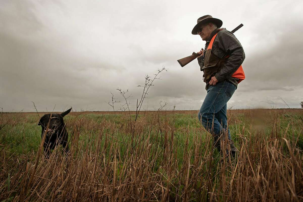 Tom Keating of Fairfax, Calif., hunting pheasant with his dog Stella at Wing & Barrel Ranch in Sonoma, Calif., on March 15, 2020.