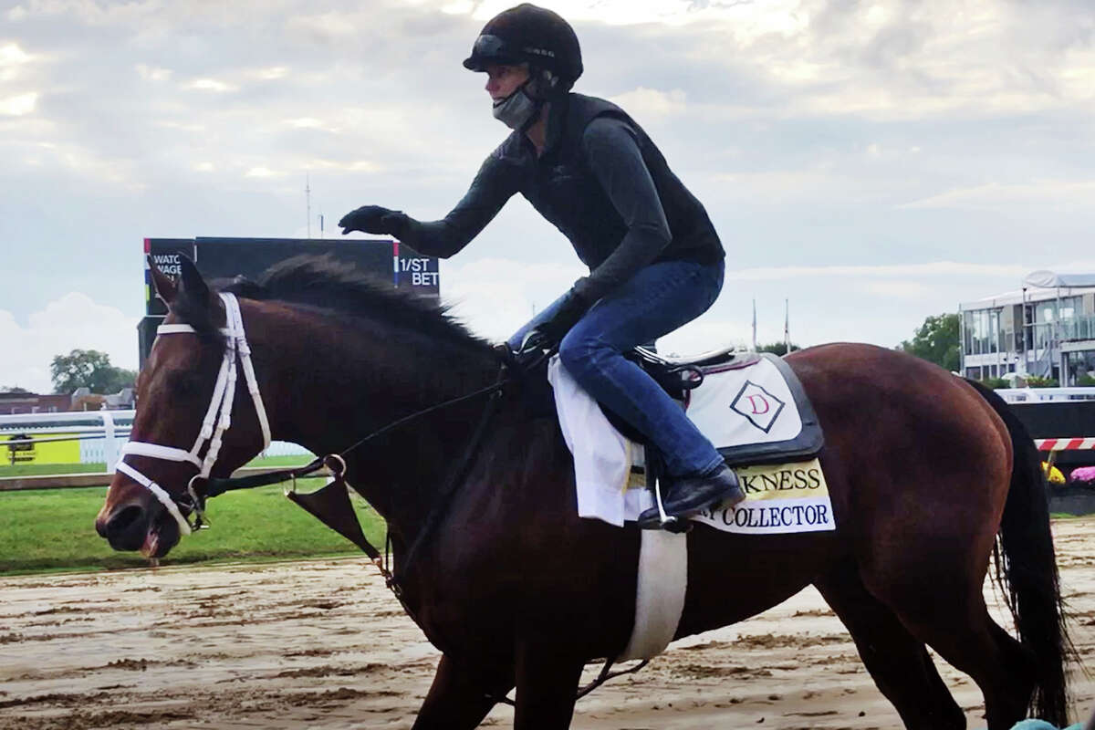 In this image taken from video, Preakness contender Art Collector, ridden by exercise rider Annie Finney, walks on the track at Pimlico Race Course, Thursday, Oct. 1, 2020 Baltimore. Art Collector looks like the biggest threat to Kentucky Derby winner Authentic in the Preakness