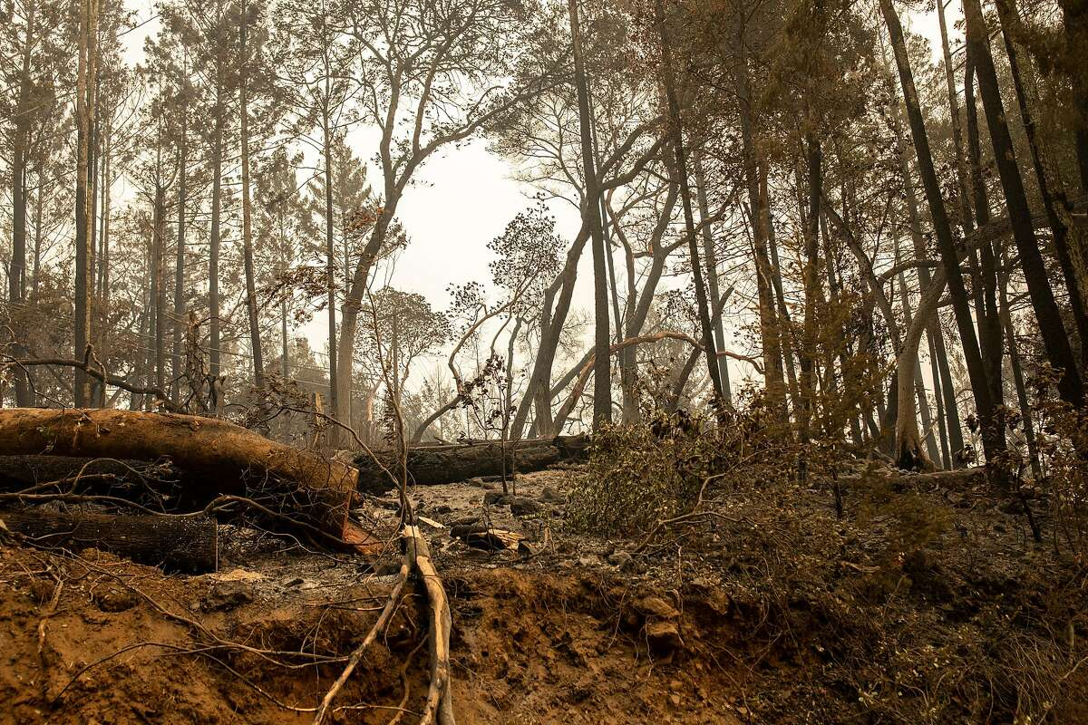 Aftermath of the Glass Fire along Spring Mountain Road, Friday, Oct. 2, 2020, in St. Helena, Calif.