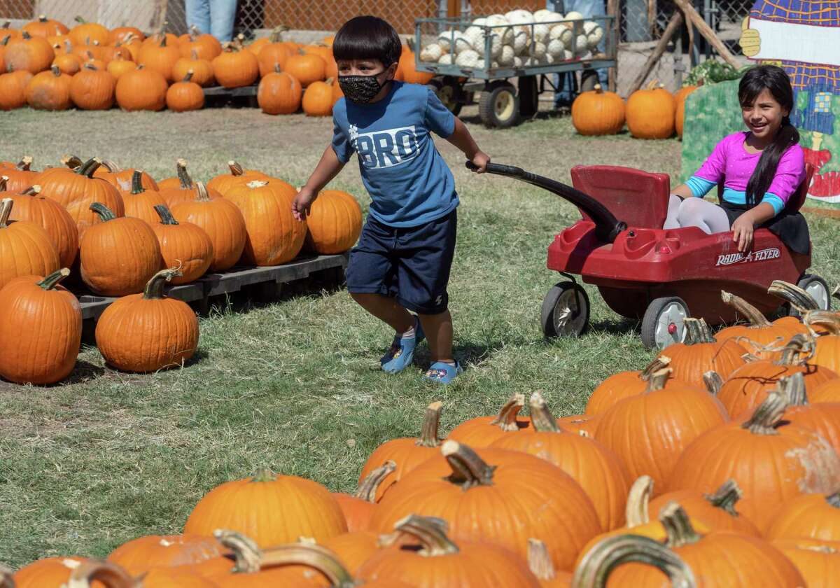 Miguel Aguero pulls his sister Zayleen as they pick out pumpkins 10/03/2020 at the St. Luke's United Methodist Church Pumpkin Patch. Tim Fischer/Reporter-Telegram