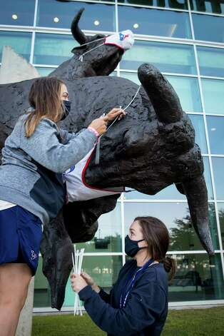 Disney Harris, left, and Bri Williams work to place a mask on the bull sculptures before an NFL football game between the Houston Texans and the Minnesota Vikings at NRG Stadium on Sunday, Oct. 4, 2020, in Houston. For the first time this season, fans will be allowed in the stadium for a game. There will be 13,300 fans able to attend the game. Photo: Brett Coomer, Staff Photographer / © 2020 Houston Chronicle