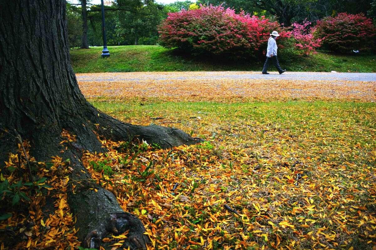 A woman makes her way along a path through Washington Park on Sunday, Oct. 4, 2020, in Albany, N.Y. (Paul Buckowski/Times Union)