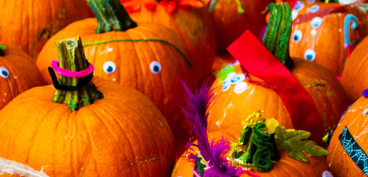 The Houston Arboretum's Halloween festivities will look a little different this year.