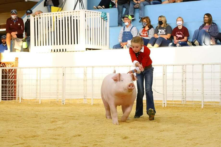 Bryleigh Beyers came in first place in the market hogs portion of the 2020 Fair of Texas Livestock Show in Dallas recently. She is pictured with her Champion WOPB Barrow. Photo: Photo Provided By Texas A&M AgriLife Extension
