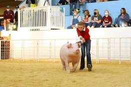 Bryleigh Beyers came in first place in the market hogs portion of the 2020 Fair of Texas Livestock Show in Dallas recently. She is pictured with her Champion WOPB Barrow.