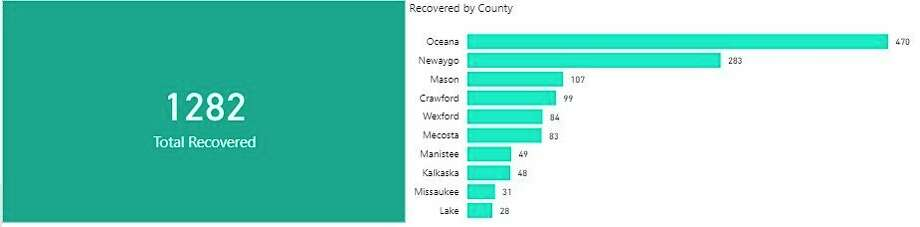 Forty-nine people have recovered from COVID-19 in Manistee County so far. (Screenshot from DHD#10 website)