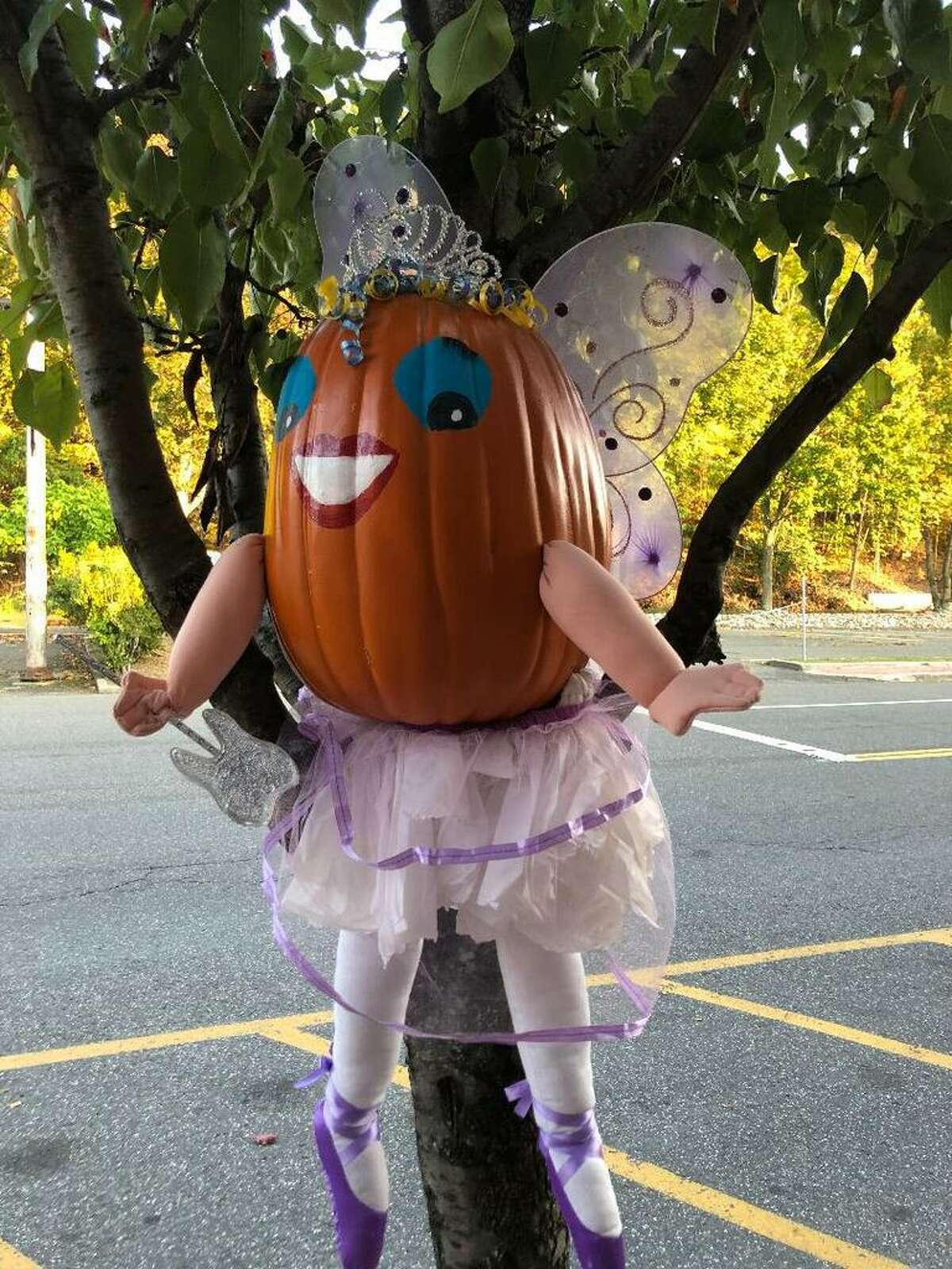More than 40 scarecrows have invaded downtown Seymour and beyond to usher in the fall season. Over on Main Street, perched in a tree outside Dr. Andrew Kurjanowicz's dental practice, you'll find the tooth fairy, dolled up in a purple tutu, sparkly tiara and a tooth-shaped magic wand. Across the way at the Grateful Dog grooming salon, a giant dog scarecrow greets four-legged friends and their humans, while next door at Rita Tottenham Dance Studios, a scarecrow ballerina is poised to pirouette. Many other local businesses and organizations have teamed up this year with the Seymour Culture and Arts Commission for their annual scarecrow event. Chairwoman Judy Simpson said since the COVID-19 pandemic forced the cancellation of many beloved, autumnal traditions in town, including the Seymour Pumpkin Festival and the commission's downtown trick or treating/costume parade, it made sense to spread the scarecrow love around.