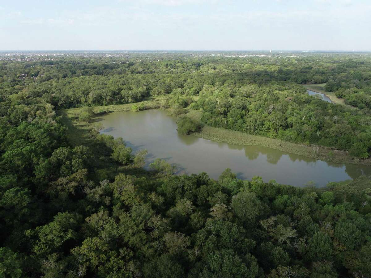 This detention pond off of Bay Area Boulevard near the Blackhawk Regional Wastewater Treatment Plant would be expanded if the city of Friendswood receives grant funding for the project.
