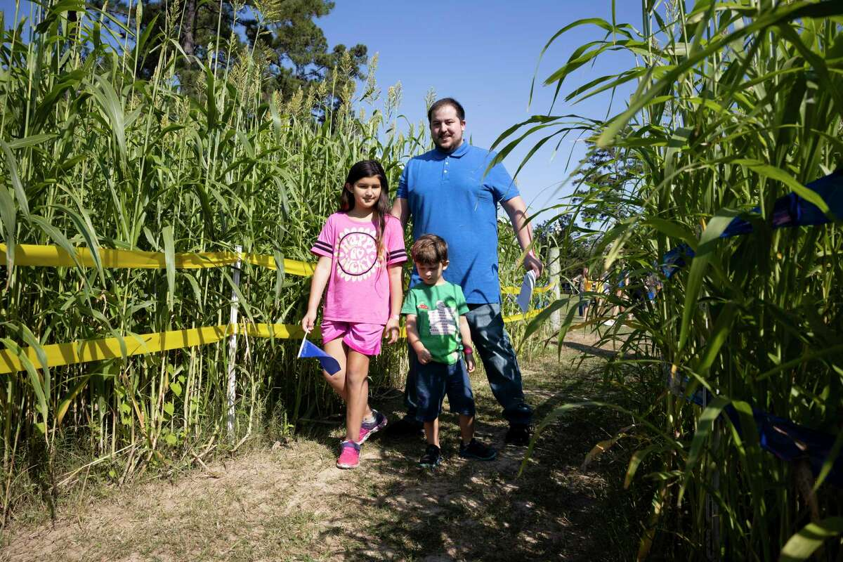 From left to right, Aurora, Raiden and Slade Gomez enter a 5-acre field at the Tomball Corn Maze, Oct. 3, 2020, in Tomball. The corn maze offers a variety of activities for families to partake in during their visit.