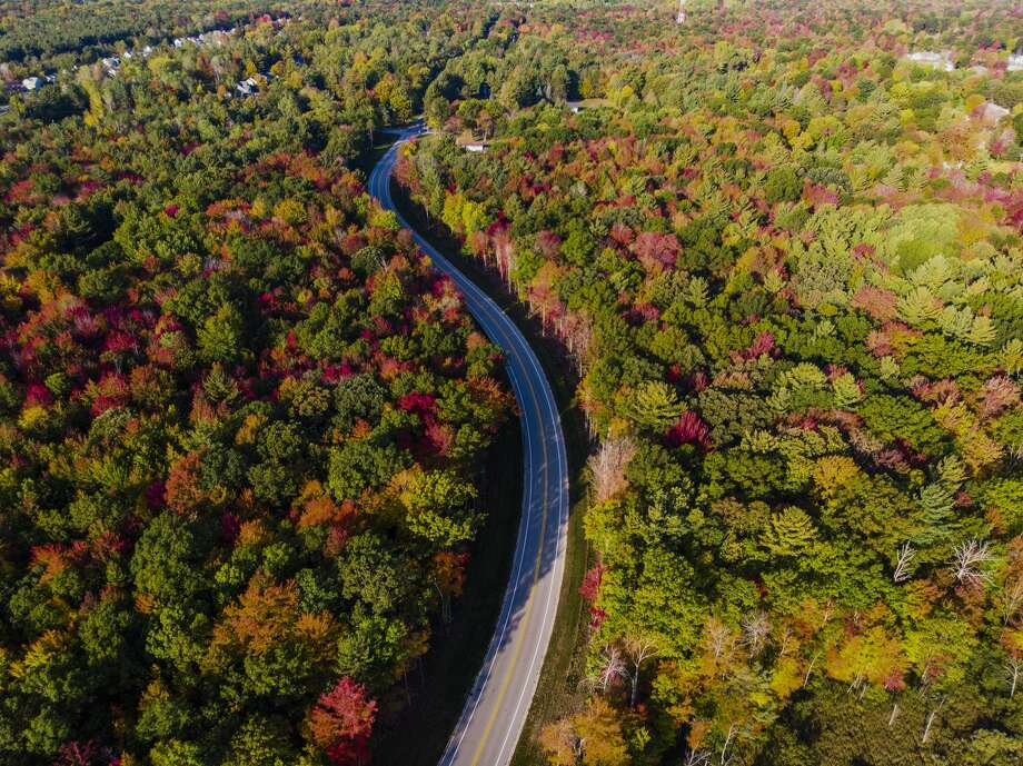 Autumn leaves in Midland are captured by a drone Tuesday, Oct. 6, 2020. (Adam Ferman/for the Daily News) Photo: (Adam Ferman/for The Daily News)