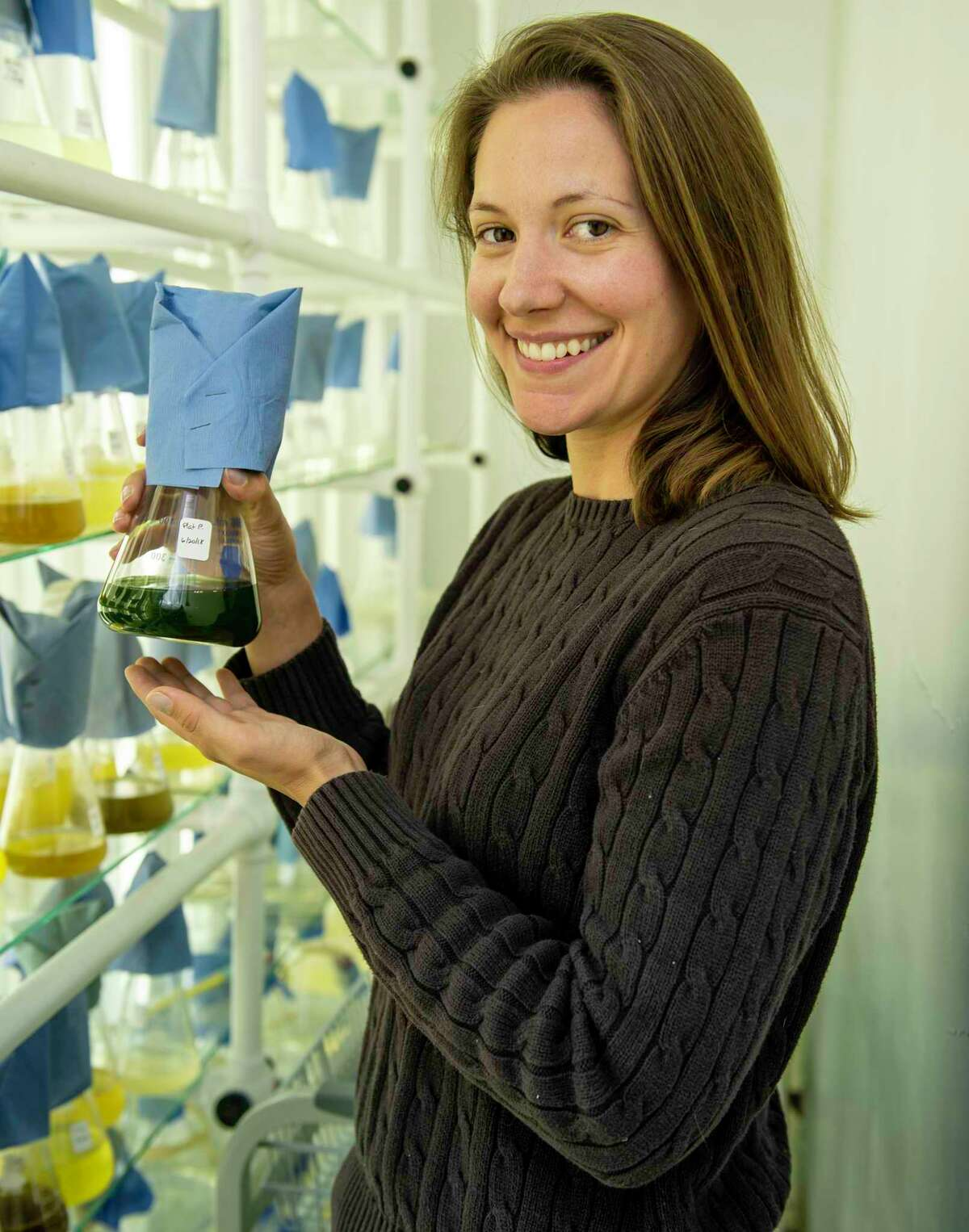 The microalgal culture collection at the Milford Lab, with culture curator Lisa Guy.
