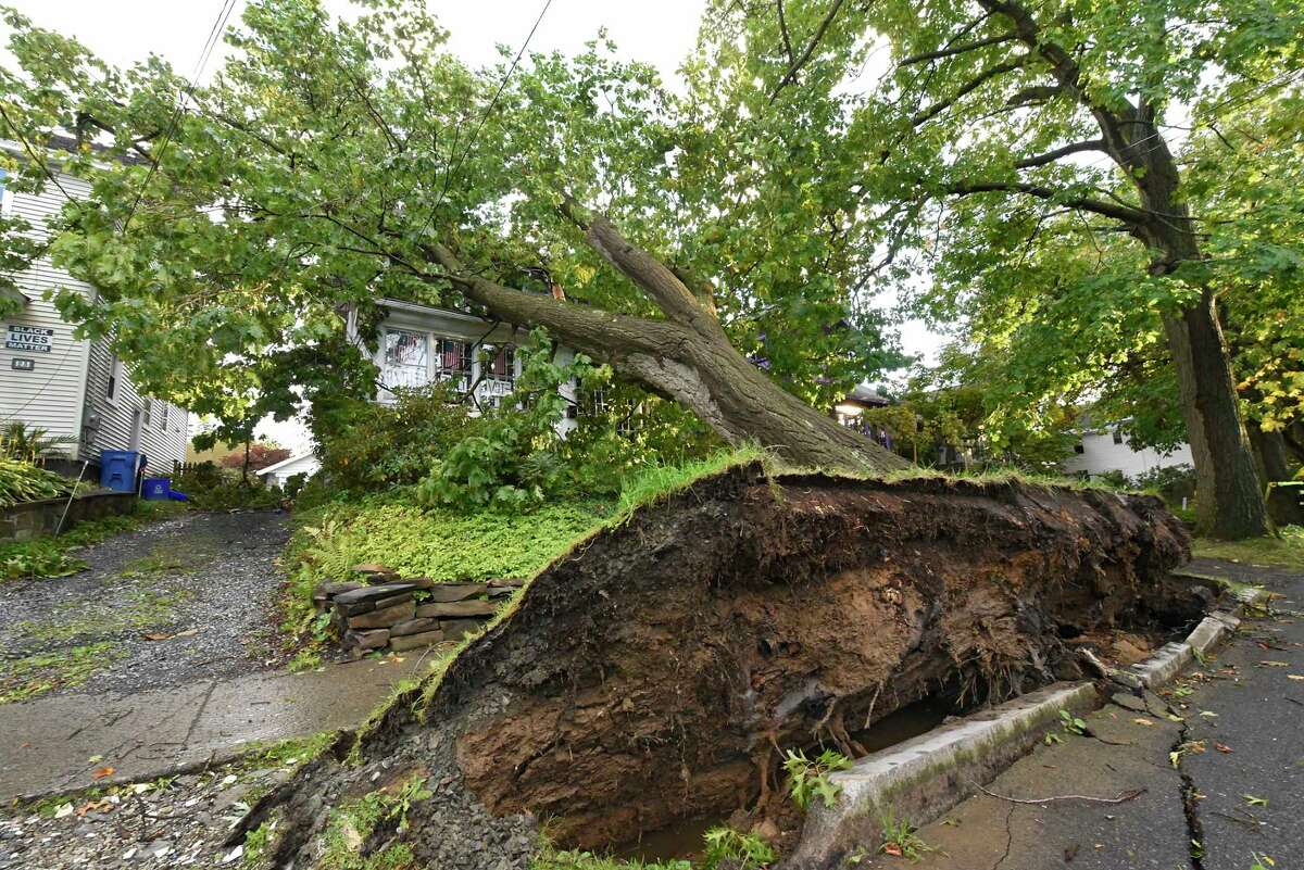 A huge tree uprooted and fell on a house on Terrace Ave. during a storm on Wednesday, Oct. 7, 2020 in Albany, N.Y. (Lori Van Buren/Times Union)