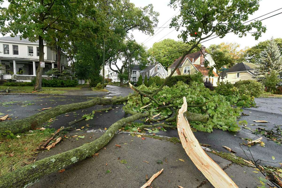 Trees and branches are seen blocking the intersection of Melrose Ave. and Homestead Ave. after a storm on Wednesday, Oct. 7, 2020 in Albany, N.Y. Limbs were caught in the wires above and in the traffic signal. (Lori Van Buren/Times Union)
