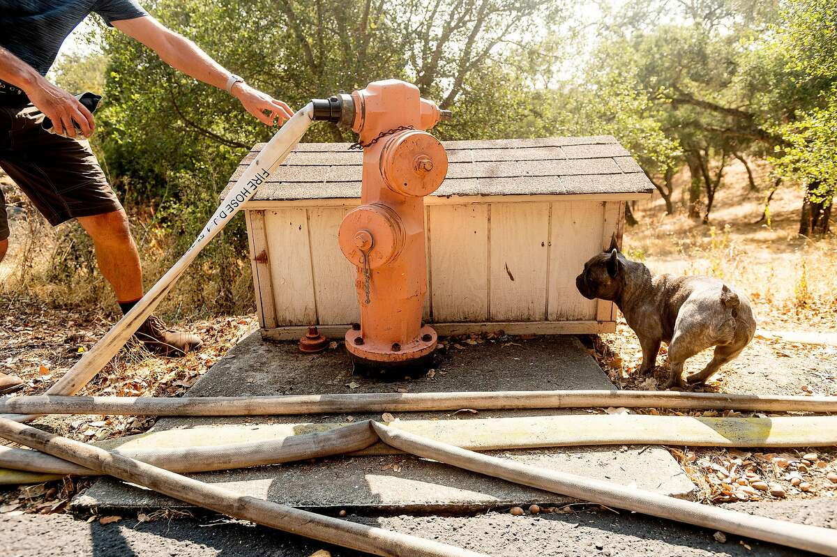 Bjarne Hansen, with dog Blu, pays a monthly fee to keep the fire hydrant on his property supplied with city water.