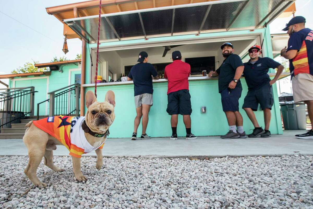 Knox, Jacob Perez' French bulldog, wears and Astros rainbow jersey as he joins Perez in the outdoor bar are open at former Houston Dynamo star Brian Ching's East End Backyard in EaDo Wednesday, Oct 7, 2020, in Houston. The owner of another EaDo bar, Pitch 25, Ching's new outdoor venture comes at a time when patio dining is Houston's preferred method of dining and drinking. The bar will serve from from a rotating list of food trucks.