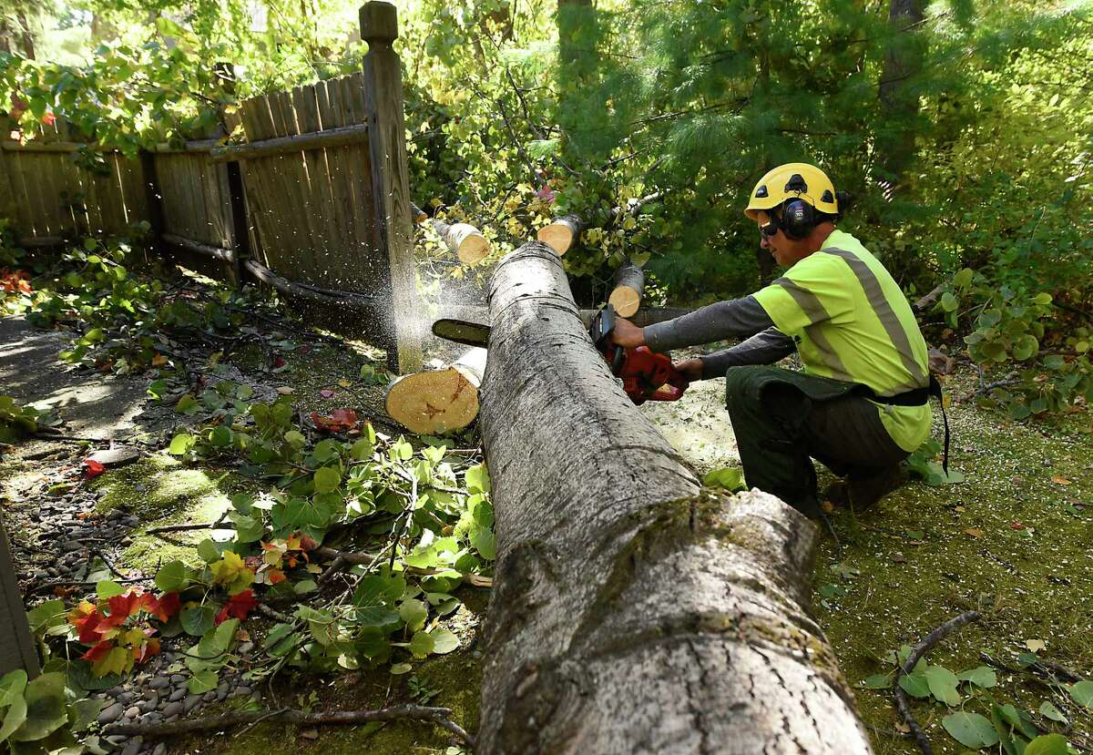 A Davey tree service worker uses a chain saw to break up a large tree which fell on a fence outside a unit at Woodlake Apartments on Thursday, Oct. 8, 2020 in Guilderland, N.Y. Wind and rain from a storm yesterday caused major damage and outages. (Lori Van Buren/Times Union)