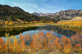 Peak fall color conditions are on display at the North Lake of Bishop Creek Canyon on October 3, 2020.