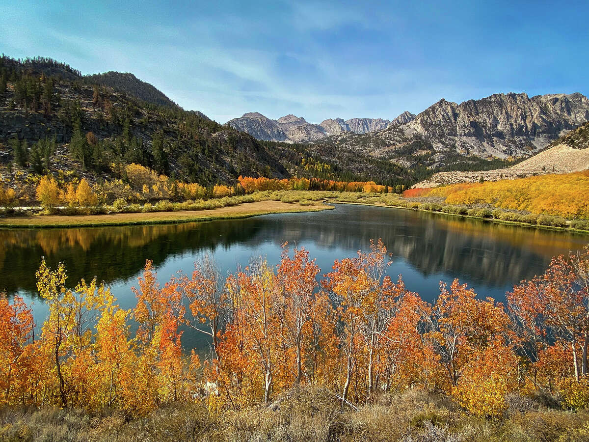 Peak fall color conditions are on display at the North Lake of Bishop Creek Canyon on Oct. 3, 2020.