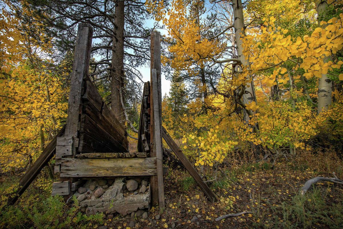 Fall colors are on display around Woods Lake Corral along Highway 88 on Oct. 5, 2020.