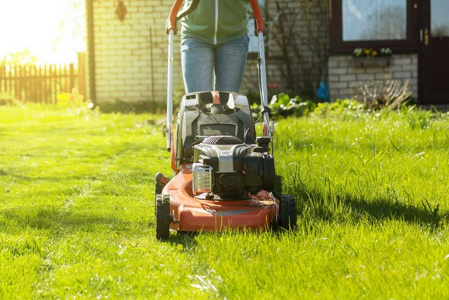 October is an important month for your lawn. Photo: Dreamstime, HO / TNS / Dreamstime