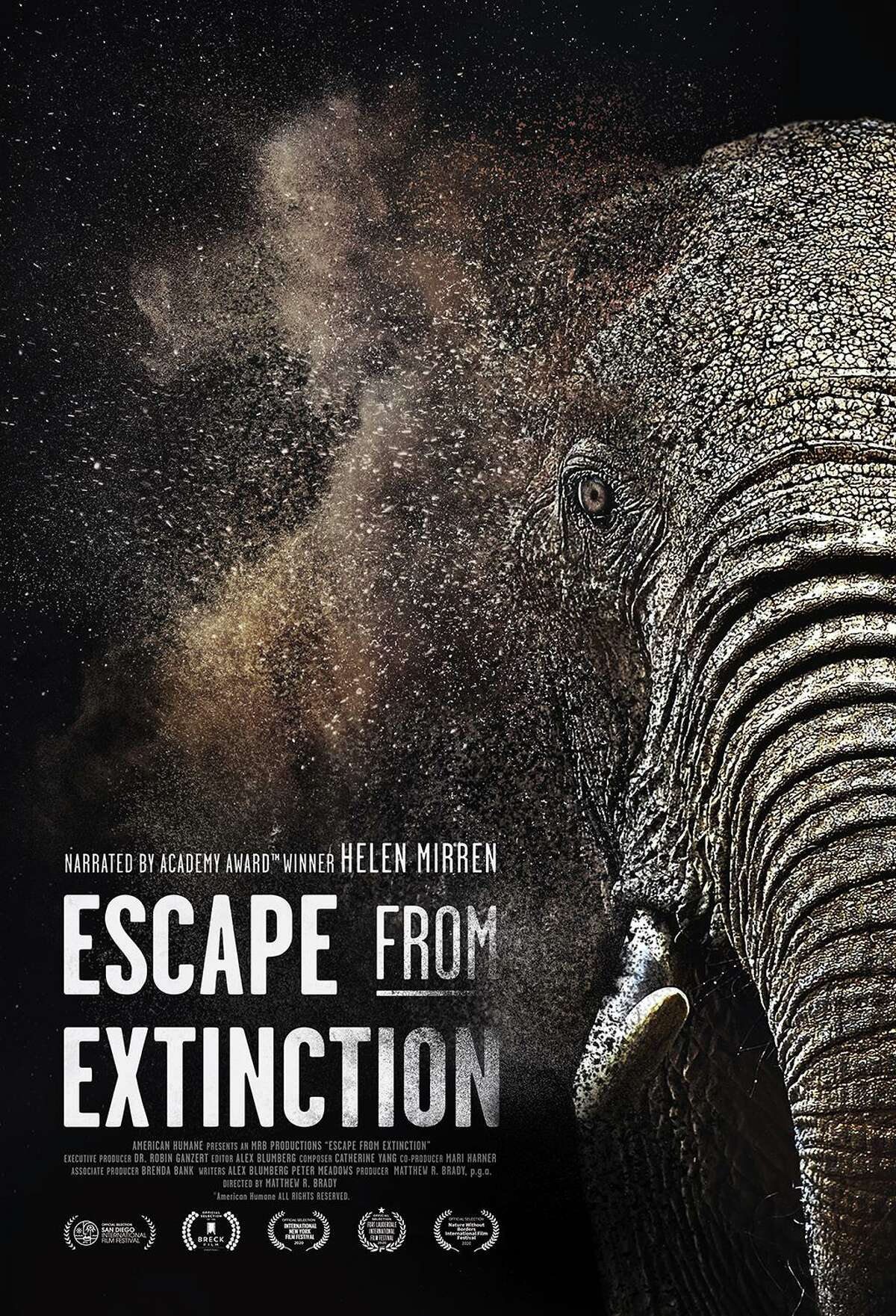 Matthew R. Brady, of Madison, has directed and produced the documentary 'Escape From Extinction,' narrated by Dame Helen Mirren. The movie will be opening in Mystic at the Cinepolis and Mystic Luxury Cinemas on Oct. 16.