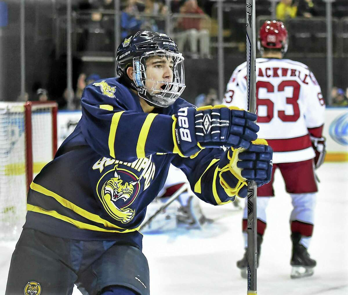 Quinnipiac's Sam Anas celebrates after scoring the third of 4th goals at 8:05 in the first period against Harvard at the Madison Square Garden on Saturday, January 9, 2016. Anas signed two-way contract with St. Louis Blues.