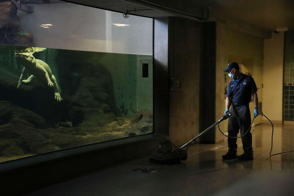 The California Academy of Sciences is scheduled to reopen in San Francisco on Tuesday, with revamped exhibits to keep visitors safe. Museum operators will keep capacity under 25%.