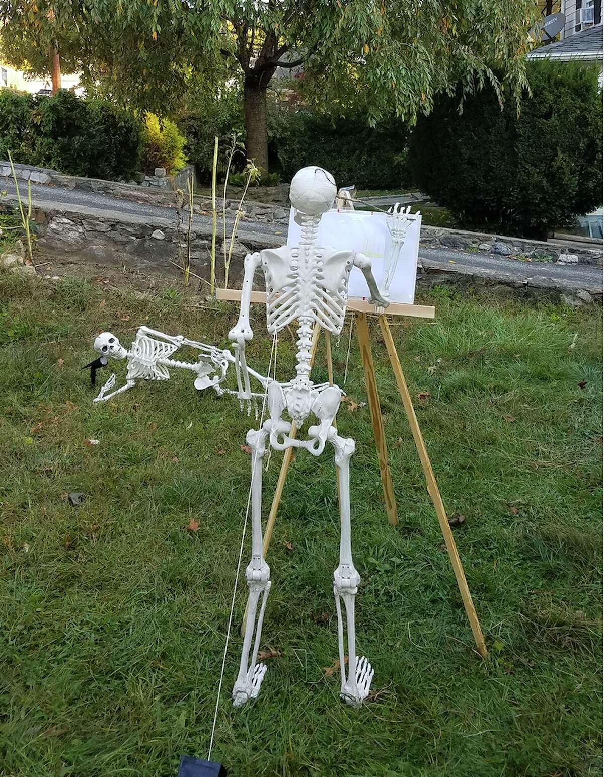 """""""I wanted two big skeletons,"""" Erin Dummeyer said. """"Then I thought, 'We should put them in funny poses in our front yard.'"""" Mike took it from there. Each day he places the skeletons in a different vignette. One day the skeletons sat on the bushes watching people walk by the Dummeyers' Palmer Street home. Another day they peered over the stone wall."""