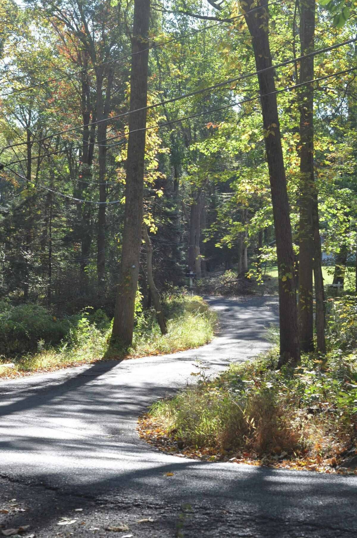 Ned's Mountain Road in Ridgefield curves through the wooded landscape, now without a lot of arrow signs identifying the turns.