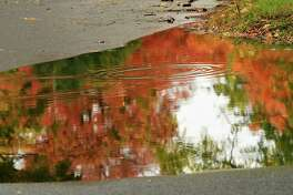 Ripples from raindrops blur the reflection of fall foliage in a puddle on a street on Tuesday, Oct. 13, 2020 in Albany, N.Y. (Lori Van Buren/Times Union)
