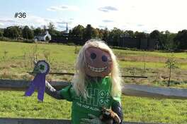 One of the characters inhabiting a fence spot at the Strong Family Farm's 9th Annual Scarecrow Contest.