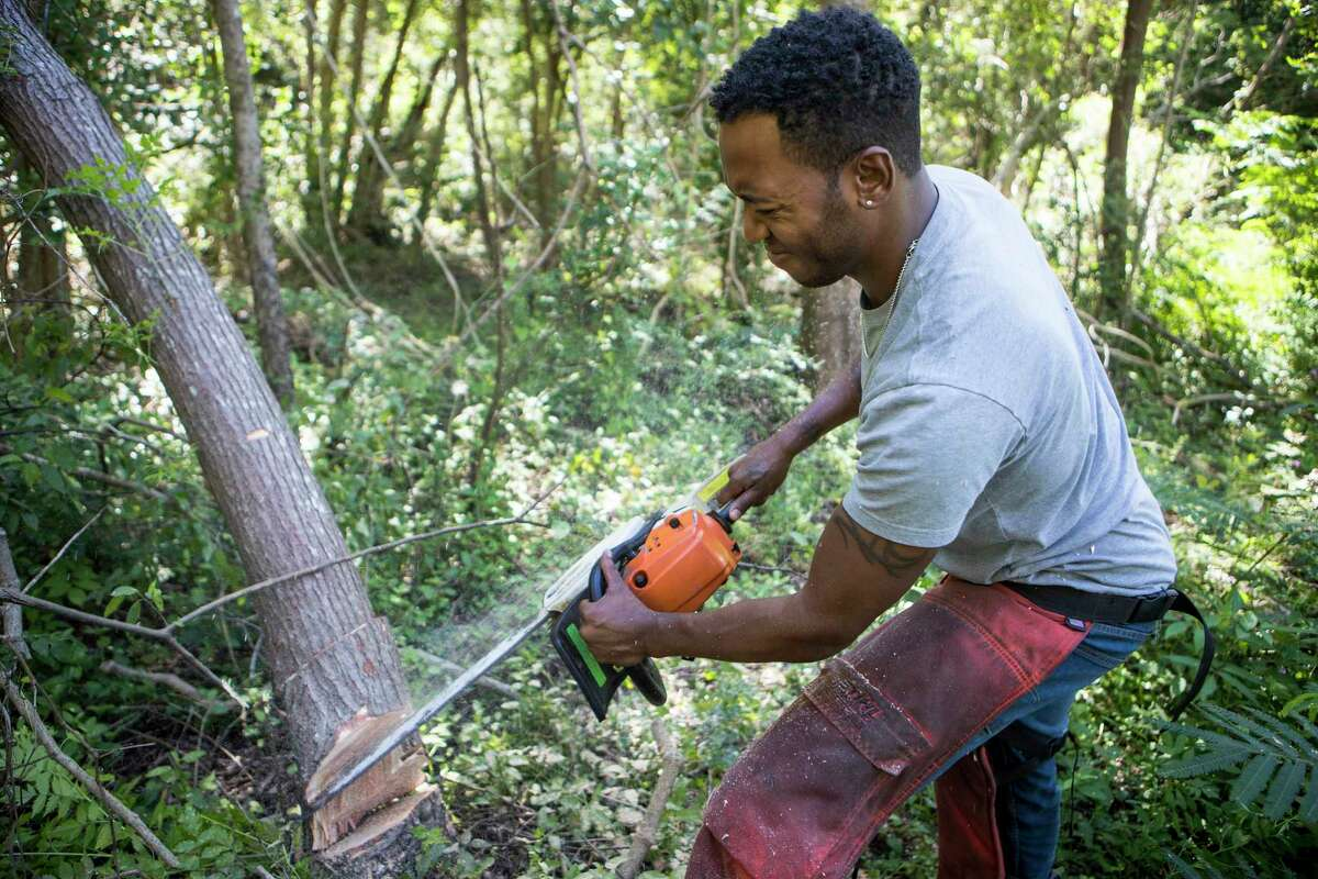 Rashad Lewis, the Democratic candidate for Texas' 36th Congressional District, uses a chainsaw to cut down trees in a vacant lot, that he plans on turning into a community garden, once the trees are cleared, Wednesday, Sept. 30, 2020 in Jasper, Texas. Lewis, 34, a lumberjack by trade, ran an insurgent write-in campaign to become the youngest person ever to serve on the Jasper City Council at the age of 30. This fall, he's reaching significantly higher, challenging entrenched incumbent Rep. Brian Babin in Congressional District 36. In a Republican-dominated region, he is the first person of color to run for the seat.