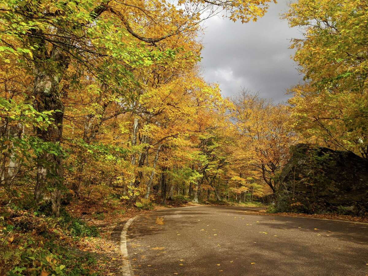 A view of the changing leaves on Vermont's scenic Route 108, a primary draw for fall visitors.