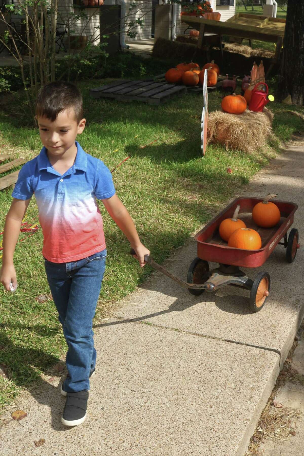Adam Mendoza heads for the family car with some pumpkins that were just bought at the Blue Monkey Resale Shop Pumpkin Patch.